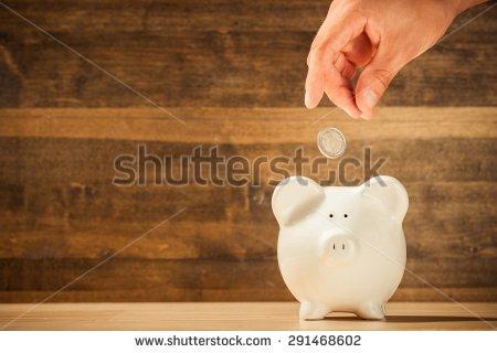 shutter pig