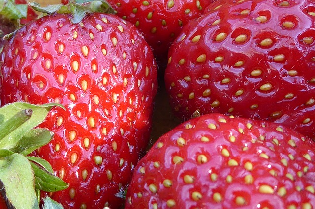 strawberries-827454_640